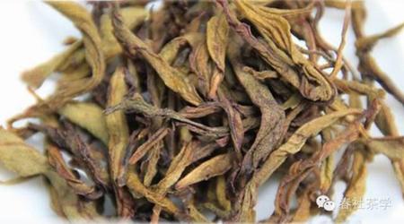 加工好的白鸡冠|广州茶艺师培训之白鸡冠茶艺表演,红茶茶艺表演,茶艺师基础知识