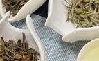 开班通知|11月4日评茶师职业技能一级、二级培训班开班啦