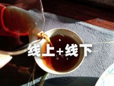 春社茶学茶文化培训双轨教学模式即将闪亮登场
