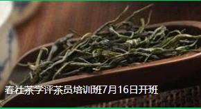 春社茶学评茶员培训班7月16日开班