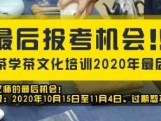 最后报考机会!!!春社茶学茶文化培训2020年最后集结